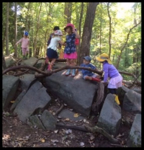 children playing on boulders in the woods